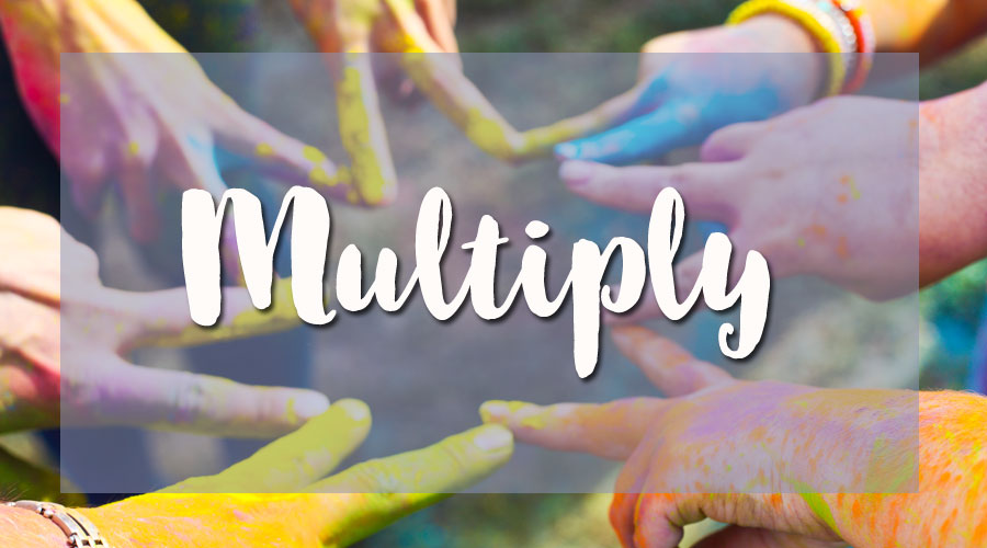 MULTIPLY Your Community :: Find, Connect to, and Deepen the Ties that Help You Grow